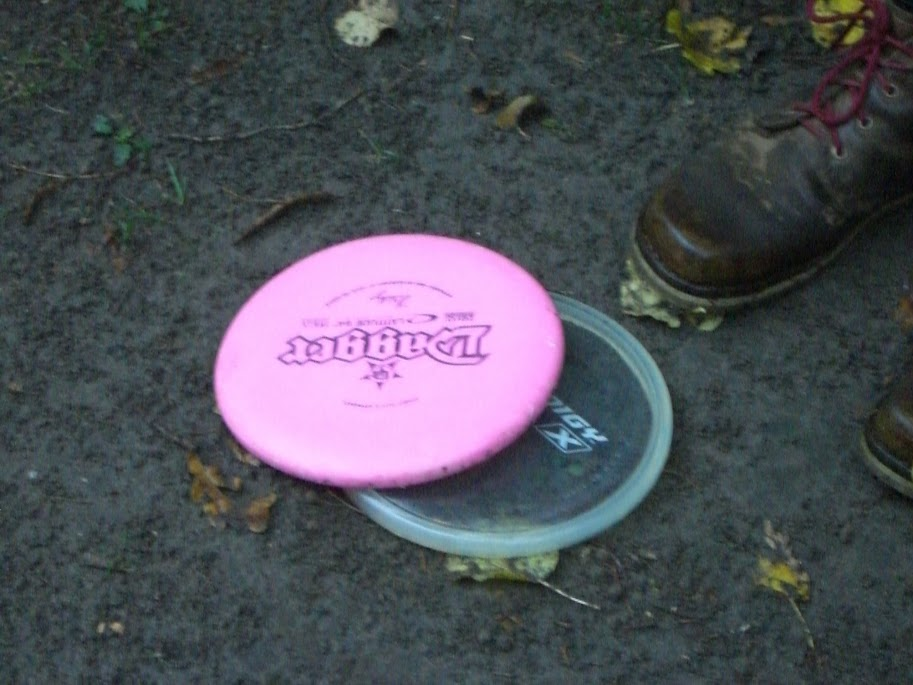 Disc Golf Bierregel