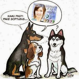 DP BBM lucu anjing pake softlens