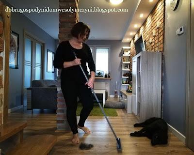 sprzątanie sierści zwierząt, futrossawka, kot, pies