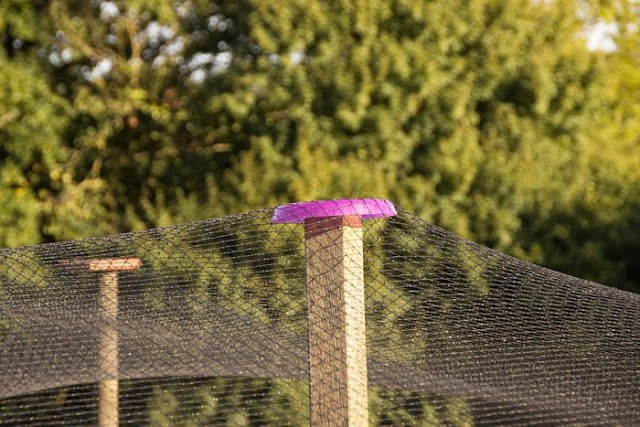 Domaine du martinaa elevage gourmandise jardinage et partage construire sa voli re poule - Filet a poule ...