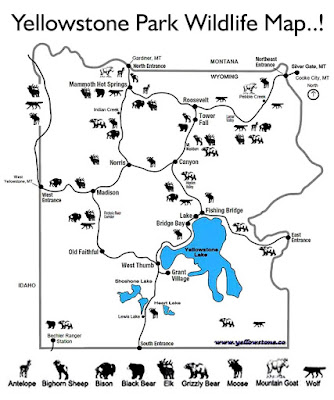 Where is Yellowstone national park map of the wildlife animal coloring pages for older children easy