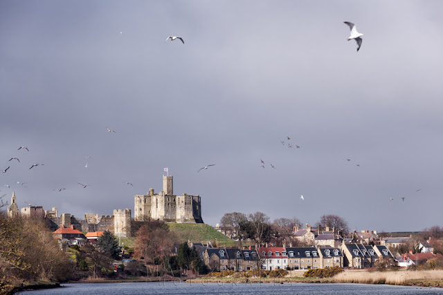 Warkworth Castle in Northumberland by Martyn Ferry Photography