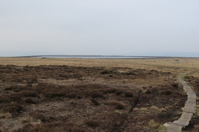 Moorland with a stone slab path winding across the right of the image. Just visible is a low-lying body of water on the horizon, Gaddings Reservoir.