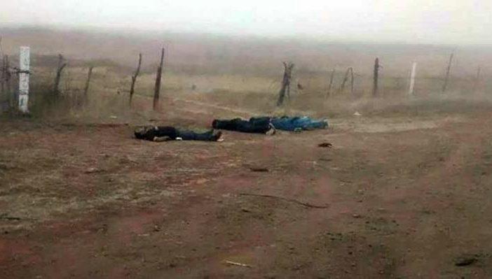 Hallan cuatro cuerpos a un costado de la carretera Transpeninsular, en Ensenada