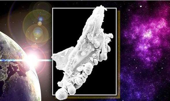 Bukti Kuat Manusia Bukan Berasal Dari Bumi