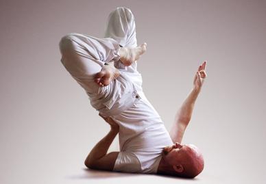 the art  science of yoga living lotus pose