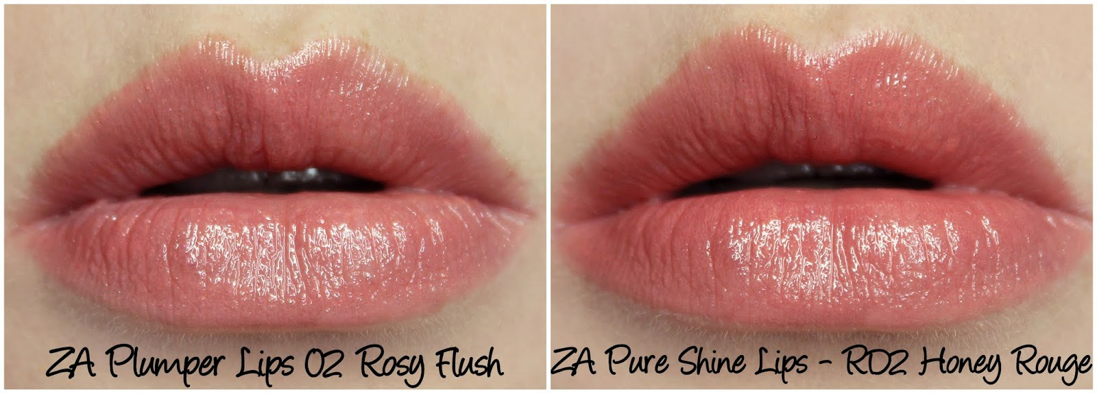 ZA Plumper Lips 02 Rosy Flush & Pure Shine Lips RD2 Honey Rouge comparison