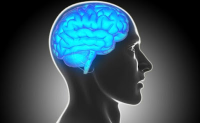 Decoded: How brain recognises familiar faces