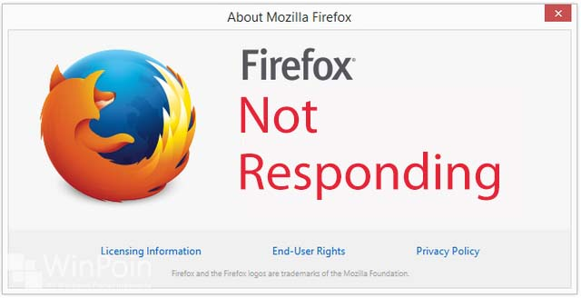 Why I Stopped Using Mozilla Firefox and You should to : eAskme