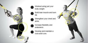 trx workout plan for beginners