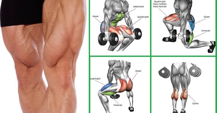 Fitness Routine: Workout Routine Dumbbells Only