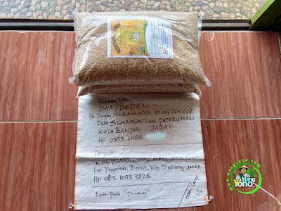 Benih pesana IMA / DEDEN Banjar, Jabar..  (Sebelum Packing)