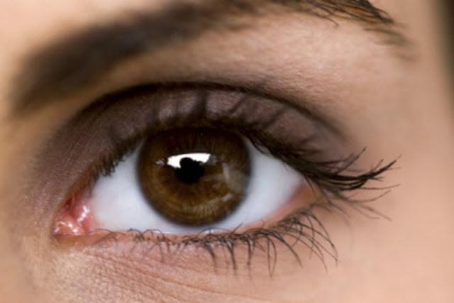 Puasa Mata= Menahan Pandangan/Ghodul bashor