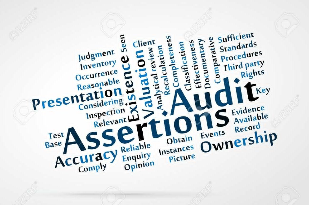 Audit procedure and financial assertion