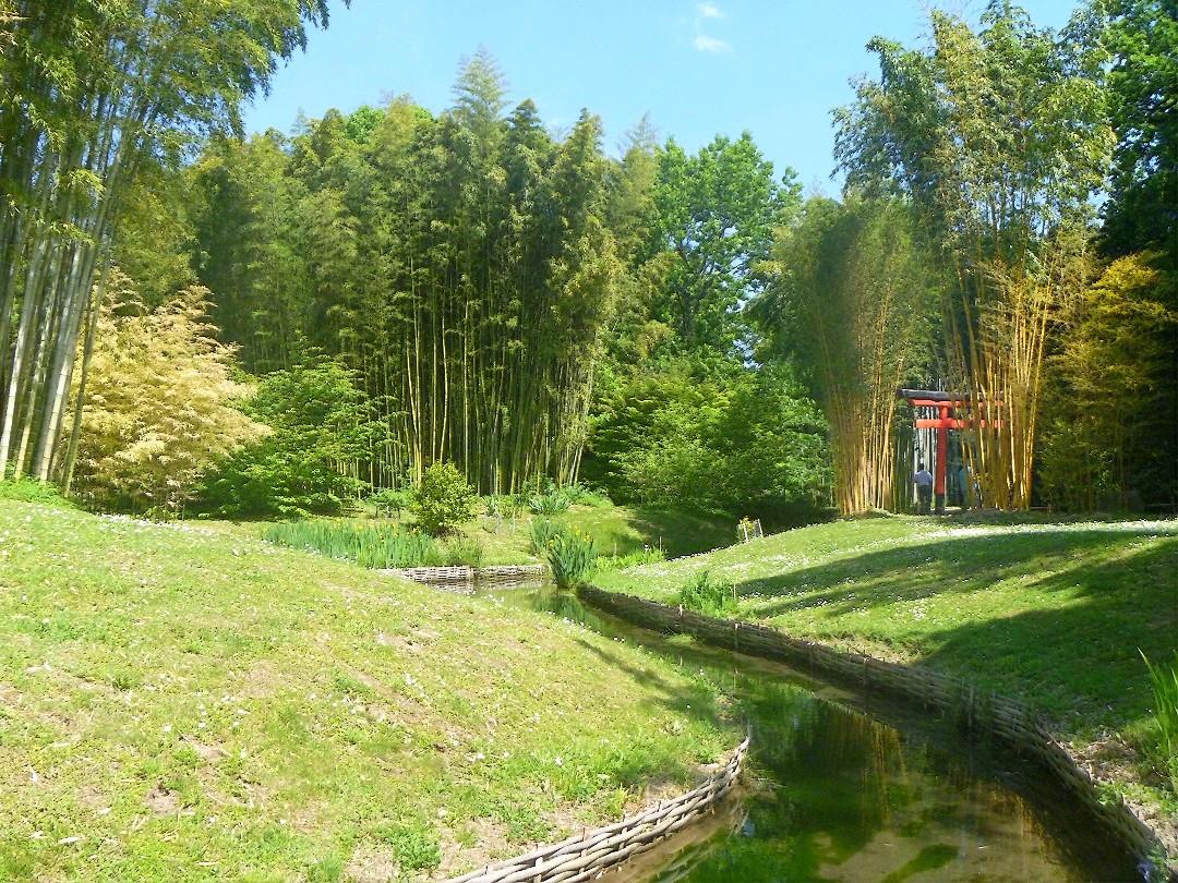 Hablemos de jardines clics sobre la bambouseraie un for El jardin de los dragones