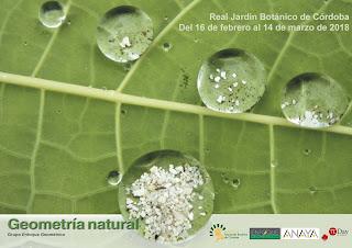 http://www.jardinbotanicodecordoba.com/evento/exposicion-geometria-natural/