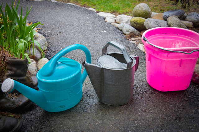 catching rain water off the eve of the house with random buckets and watering cans