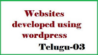 websites developed using wordpress telugu