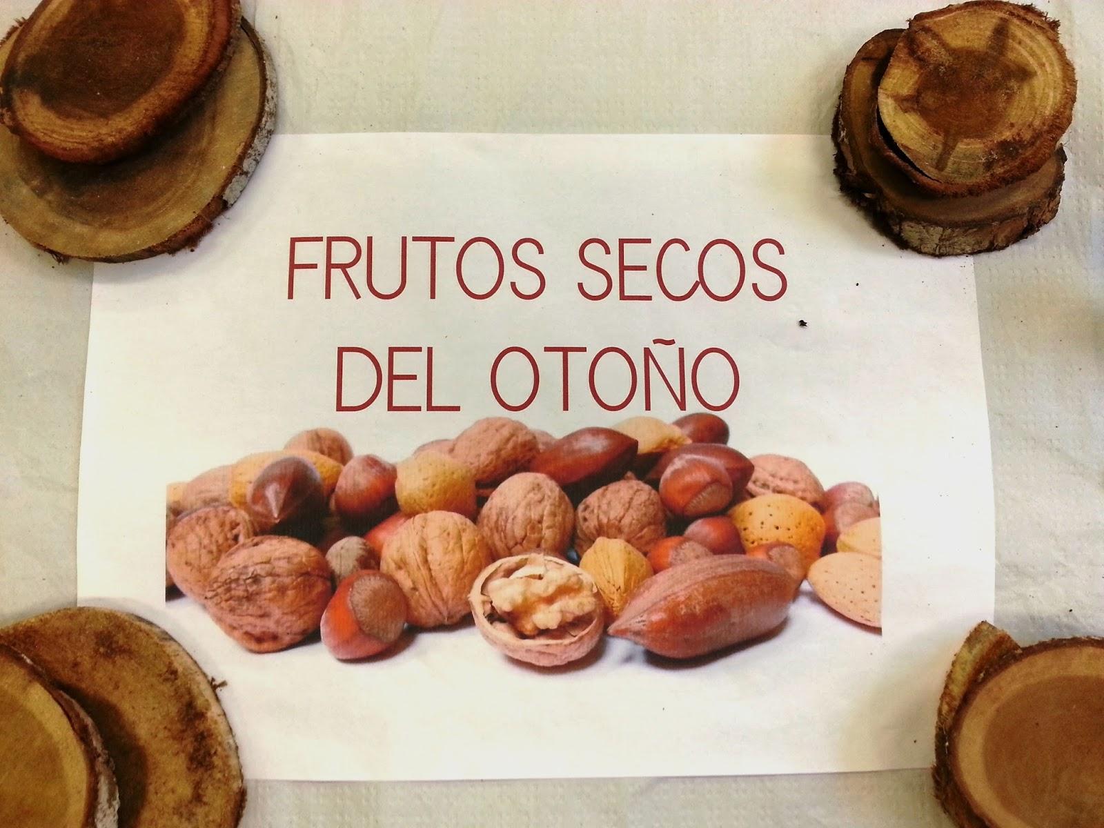 blog de 1 de primaria los frutos secos del oto o