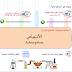الأمتصاص  Adsorption