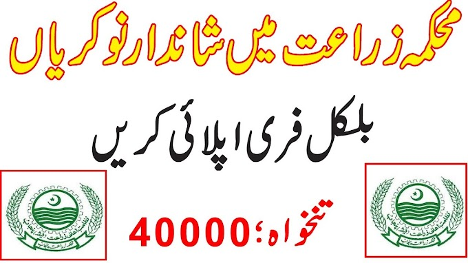 Agriculture Department jobs 2020   Latest New Advertisement