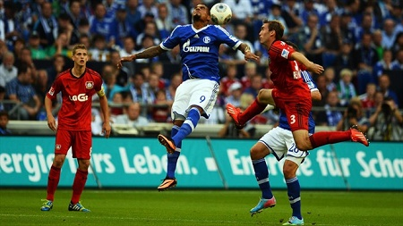 Assistir  Bayer Leverkusen x Schalke 04 AO VIVO  Grátis em HD 28/04/2017