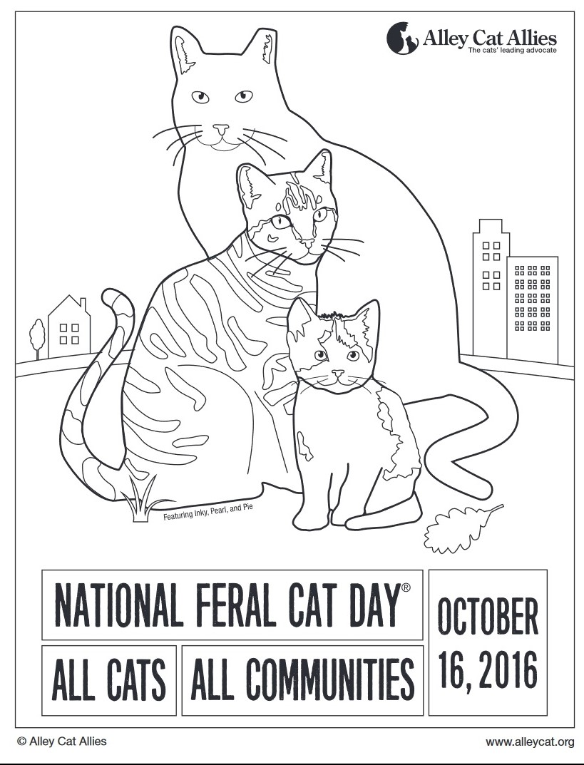 Theres Even A National Feral Cat Day Coloring Page