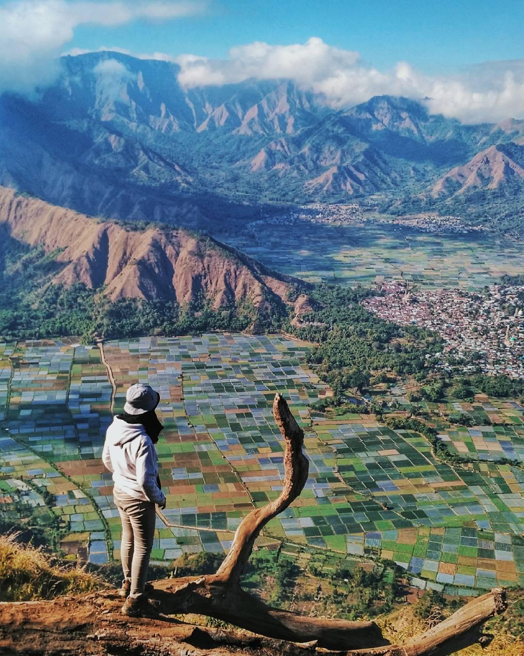 Koleksi Gambar Kartun Pendaki Gunung Kolek Gambar