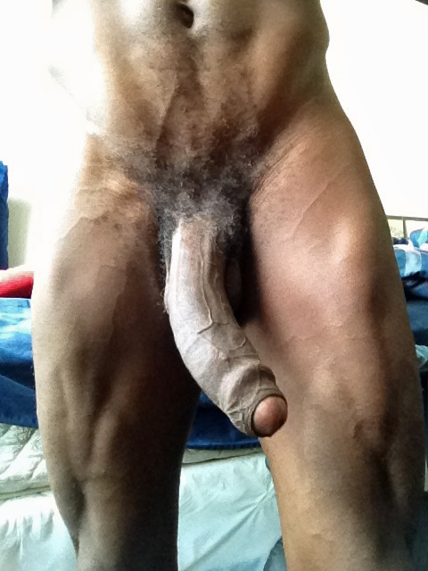 wife big black cocks only