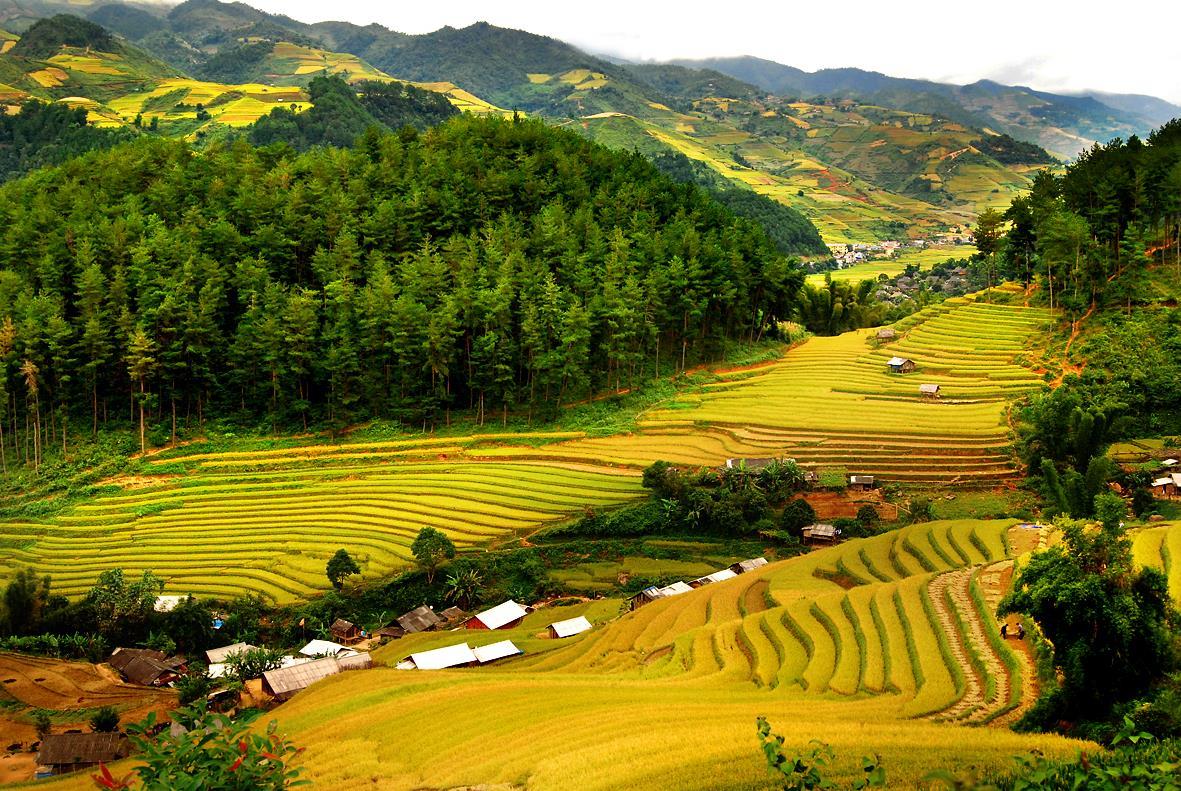 Học thi pro - Dân tộc Thái ở vùng cao Thanh Hóa
