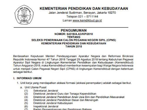Pendaftaran CPNS Kemendikbud 2018