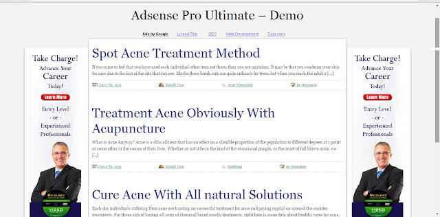 Adsense pro ultimate