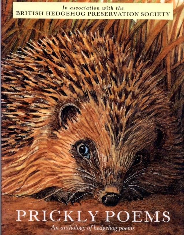 The Hedgehog Shed Hedgehog Poetry