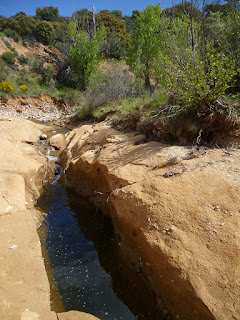 Cauce del arroyo de Matarrubia
