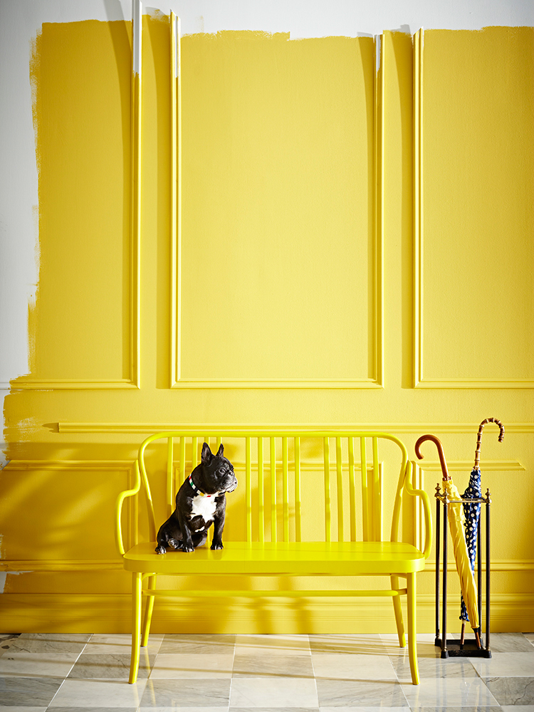 Smitten with these bright cheerful spaces daily dream Bright yellow wall paint