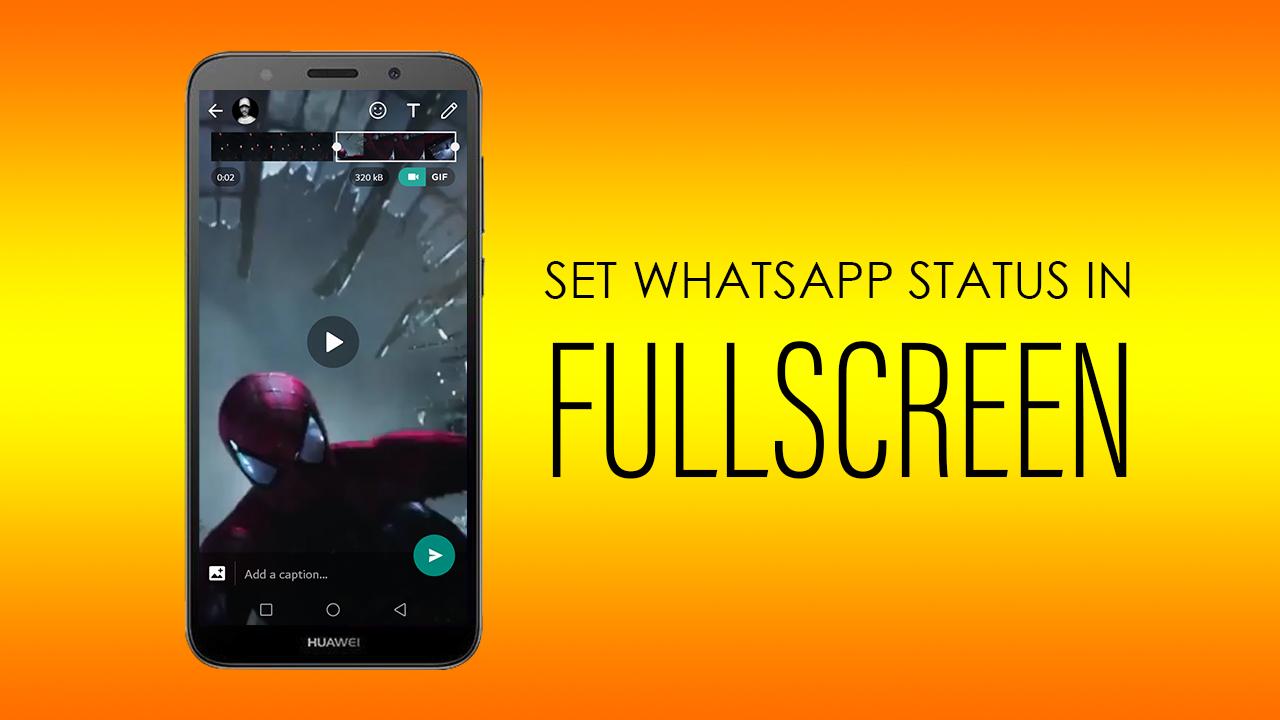 Set Your Whatsapp Status Fullscreen B9 Studios