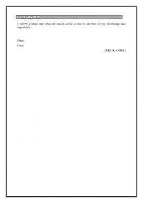 Senior Accountant Resume3