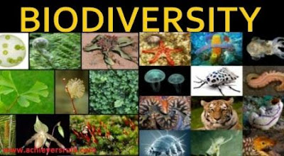 Concept of Biodiversity And Its Conservation