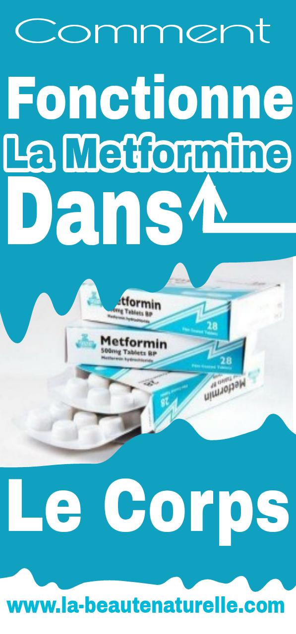 Comment fonctionne la metformine dans le corps