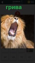 800 слов лев с открытой пастью и шикарной гривой 7 уровень