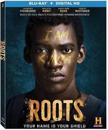 Roots Part 1 (2016) Dual Audio Bluray Movie Download