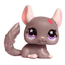Littlest Pet Shop Carry Case Chinchilla (#495) Pet