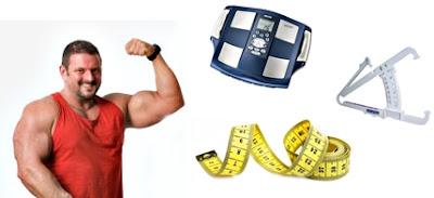 Nutrición para reducir grasa corporal y aumentar masa muscular en endomorfos
