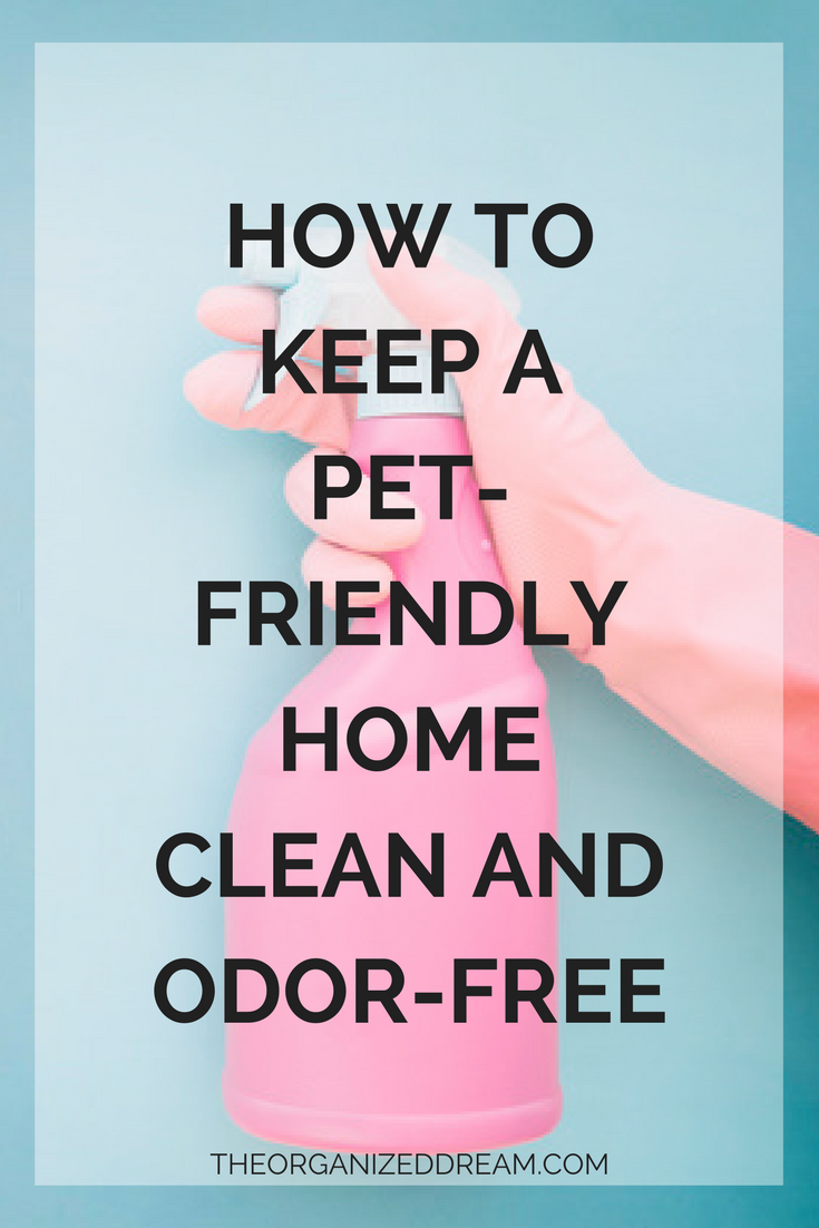 How To Keep A Pet Friendly Home Clean And Odor Free The