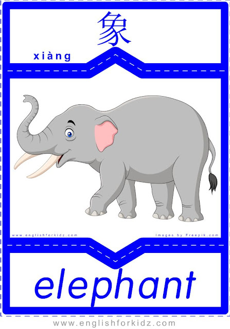 Elephant - English-Chinese flashcards for wild animals topic