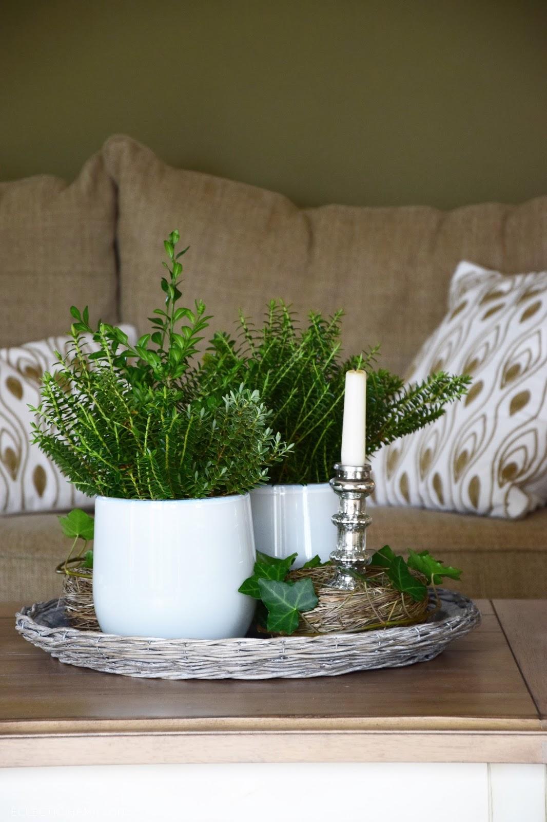 Deko für den Wohnzimmertisch. Immergrün frisch und winterlich. Winterdeko Deko Dekoration Immergrün natürlich