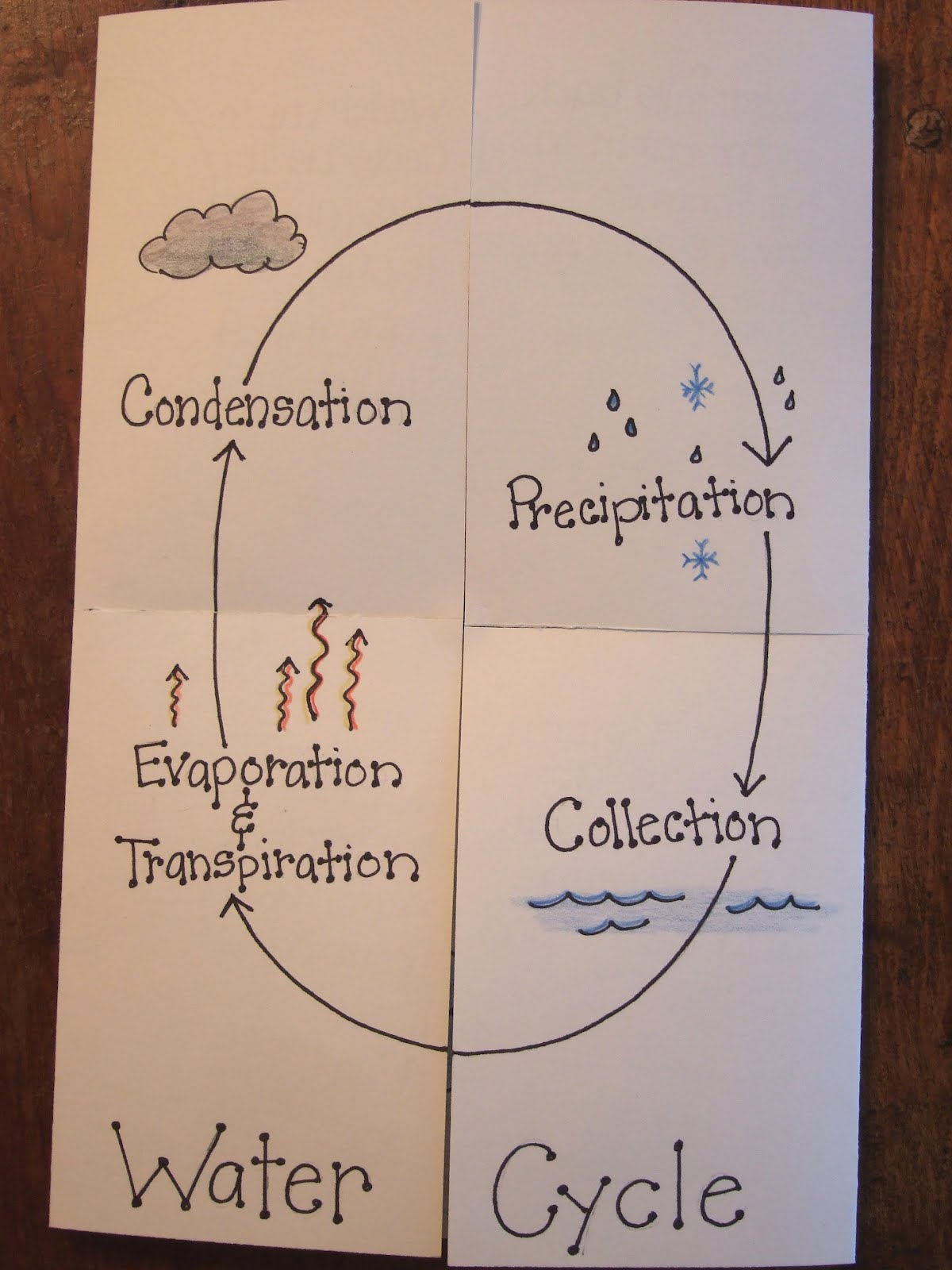 water cycle paper - photo #3