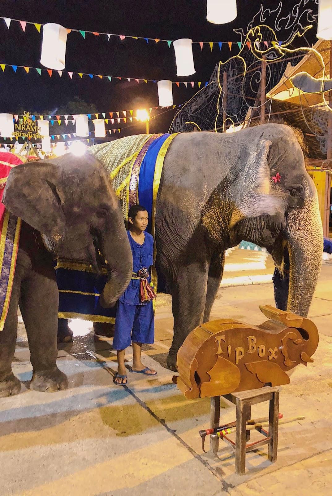 Siam niramit elephant performers