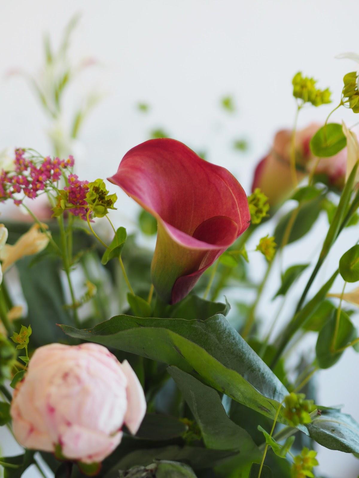 Pink Powder Peonies, Calla Lilies, Robusta, White Gladioli by Bloom & Wild