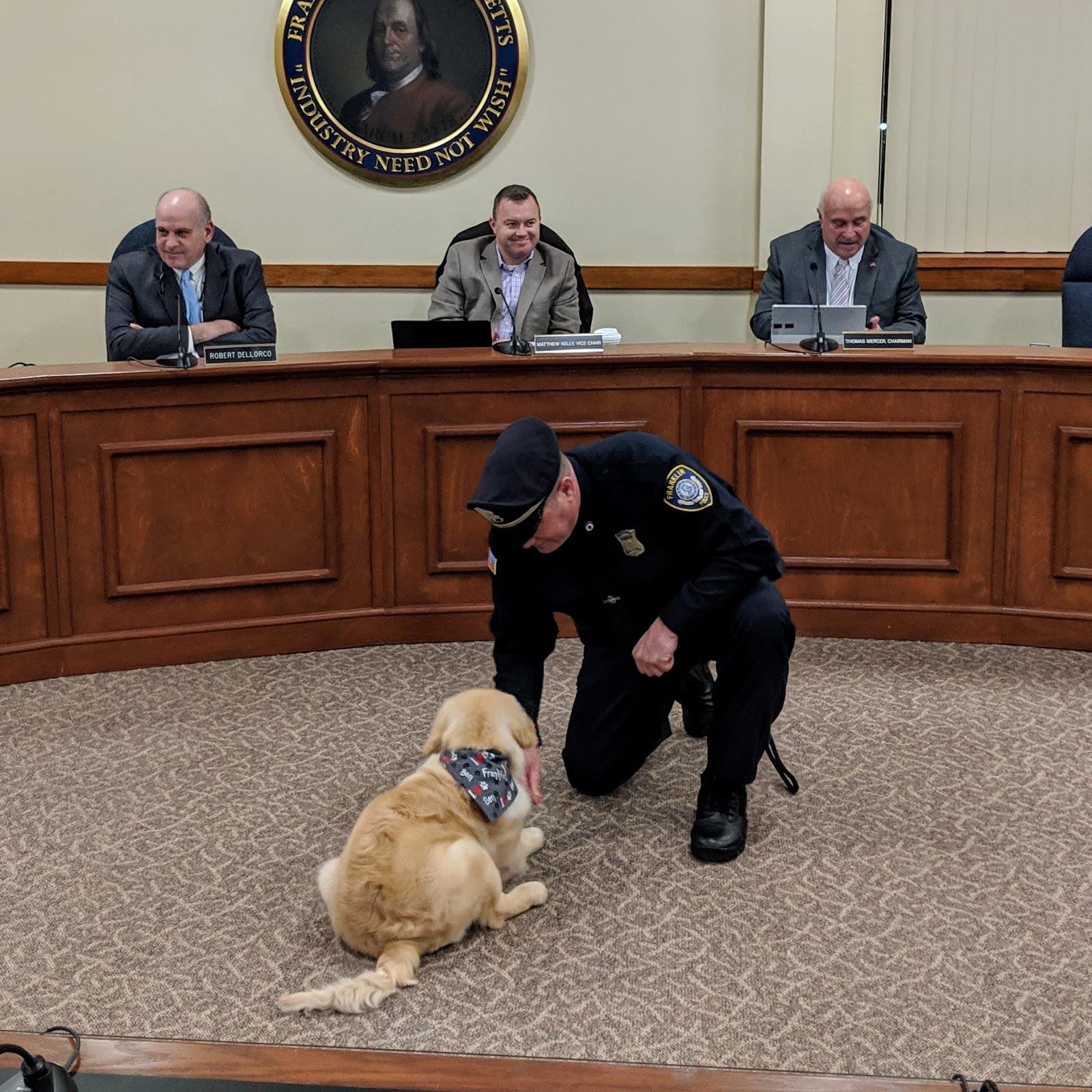 Franklin Matters Ben Is Still Only In Puppy Kindergarten